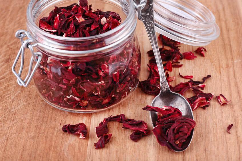 Chá de Hibisco: Para que serve? Veja os Benefícios de Tomar!